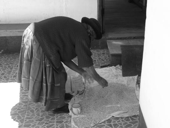Mujer limpiando quinoa. Bolivia, 2009. Archivo personal GCabreraGalich